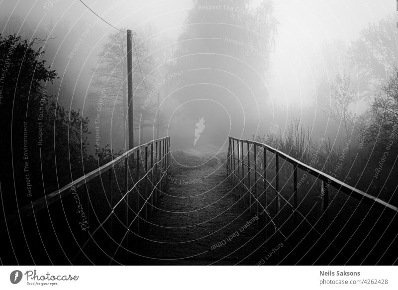 A footbridge over a river in the woods autumn blurred color creek damp environment exploration fall flowing fog foggy forest hiking landscape leisure latvia