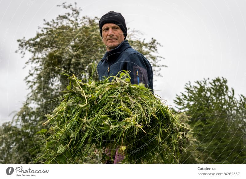 Man gardening in spring , on a grey cold day Meadow Lawn Garden daylight Day Spring Grass Plant Nature flora person masculine Gardening Cap cut grass Sky Gray