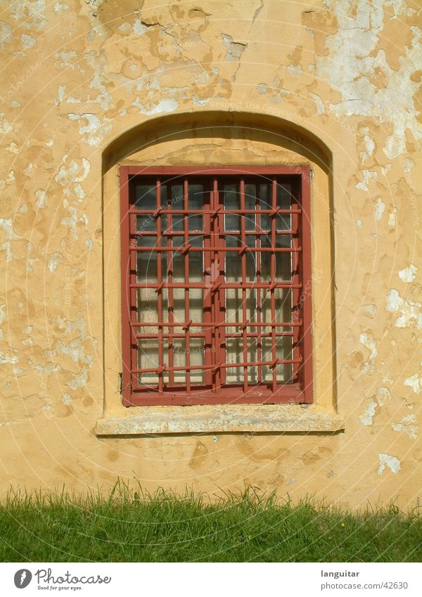 mywindow Window Grating Yellow Red Wall (building) Fortress Captured Square Window board Plaster Decline Broken Grass Green Architecture Historic Glass