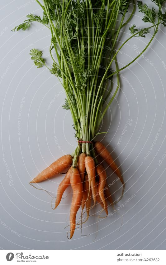 Carrots with green carrots carrot green Biological Food Vegetable Fresh Organic produce Vegetarian diet Nutrition Healthy Healthy Eating Orange Beta-carotene