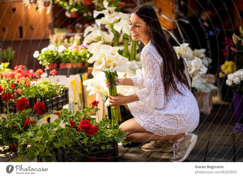 Young woman buying flowers at the flower market beauty beautiful shopping young green portrait customer gardening nature store plant adult dress youth spring