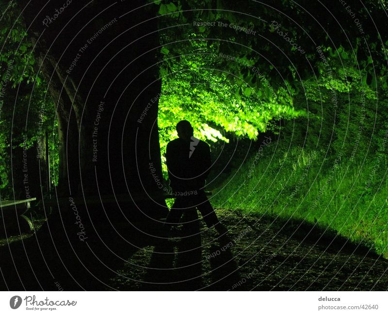 Human being Green Calm Forest Sit
