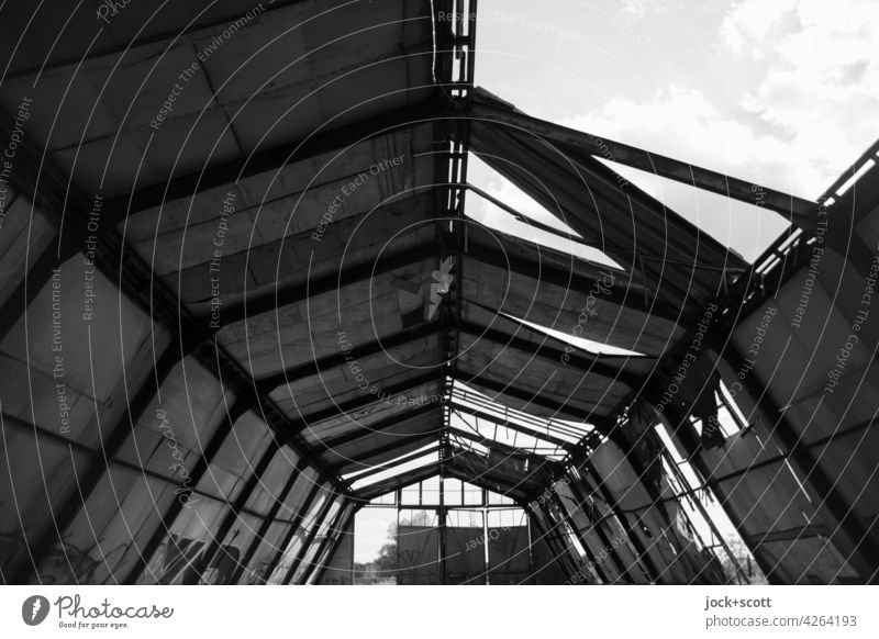 gradual destruction of a lost round arch hall Warehouse Symmetry Long Derelict metal construction Apocalyptic sentiment Ruin Broken Change Structures and shapes
