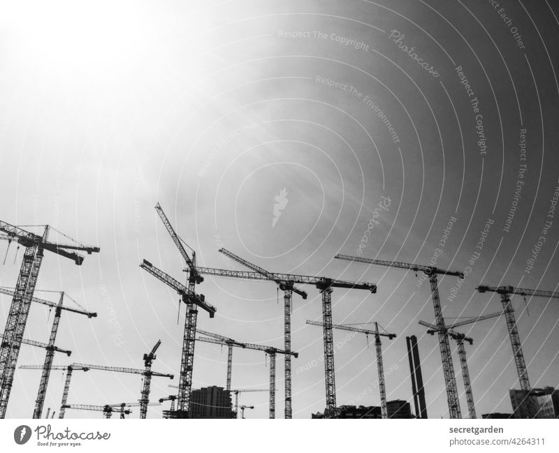 crane ballet Black & white photo Crane Deserted Exterior shot Construction site Clouds Work and employment Industry Economy Build Day Sky Technology