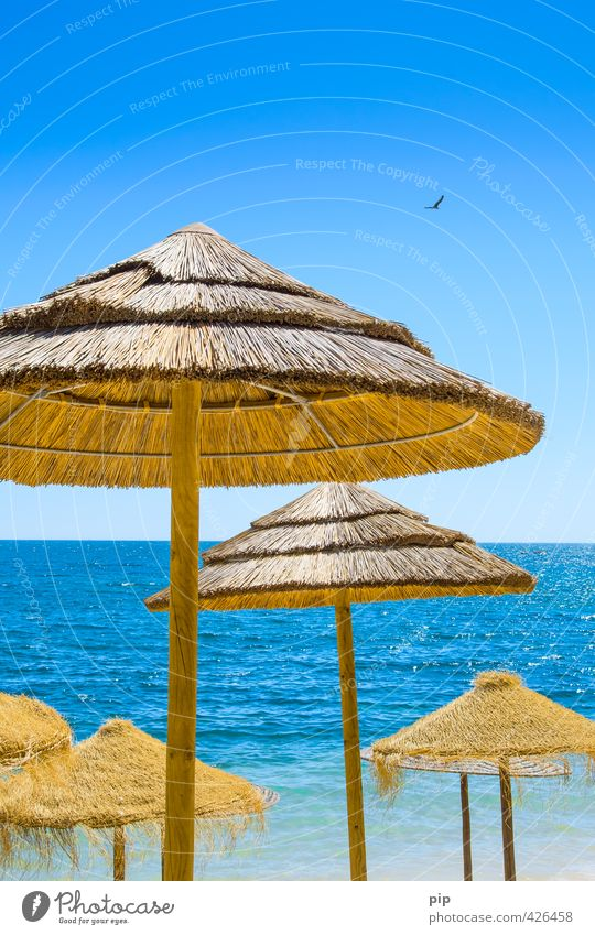 sunblock Nature Water Sky Summer Beautiful weather Warmth Coast Ocean Sunshade Umbrellas & Shades Blue Brown Yellow Vacation & Travel Tourism Thatched roof