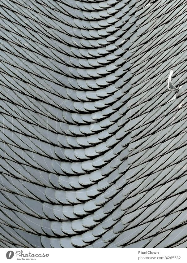 Slate Wall (building) Wall (barrier) Architecture Structures and shapes Manmade structures Facade Building Pattern House (Residential Structure) Abstract Gray