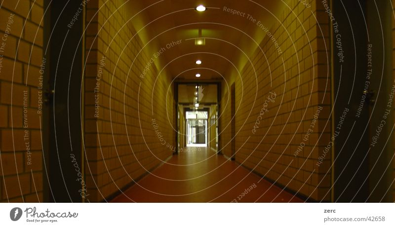 School Architecture Door School building Hallway Depth of field Way out Education