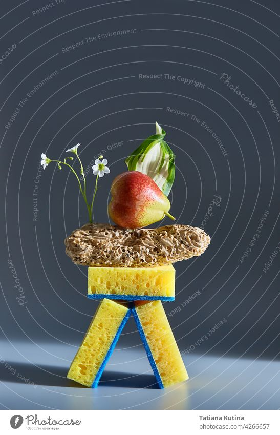 Creative composition of food, sponges, wood and flowers. Advertisement idea. Minimal nature concept. Clean and health concept. freakebana creative design