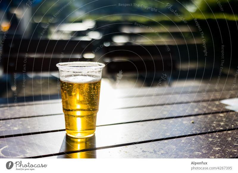 prost Beer Beer garden Pils Alcoholic drinks Exterior shot Sunlight Light (Natural Phenomenon) Deserted Colour photo Glass Beverage Beer glass Cold drink