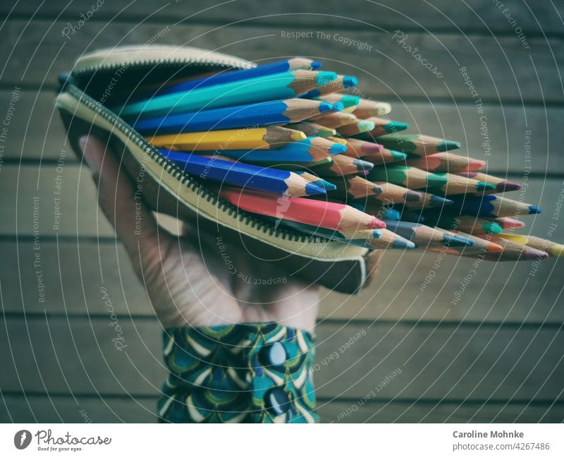 Woman holds an open case in her hand with colored pencils variegated Green Red Multicoloured Yellow Blue Colour colourful Orange Colour photo Deserted motley