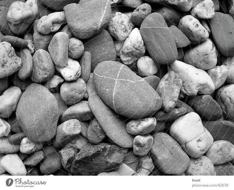 stones Pebble Gravel Beach Black & white photo TIF Close-up