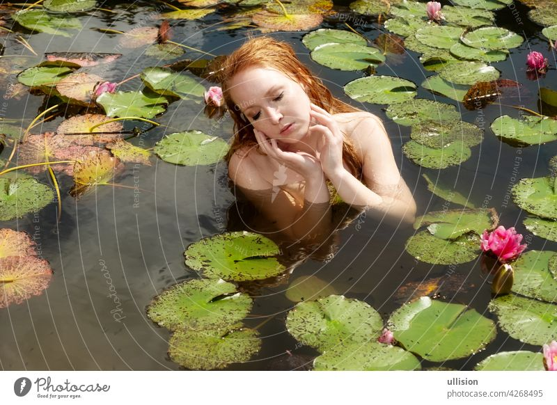 Portrait of sexy young redhead woman mermaid sits seductive with pink water lilies in the water, lake, pond waterlilies sensitive elegance swim scene ophelia