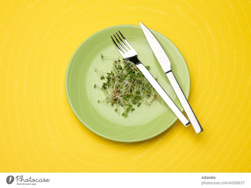 green sprouts of chia, arugula and mustard in a green round plate, top view. A healthy food knife fork agriculture banner bio diet dish eco edible fresh grass