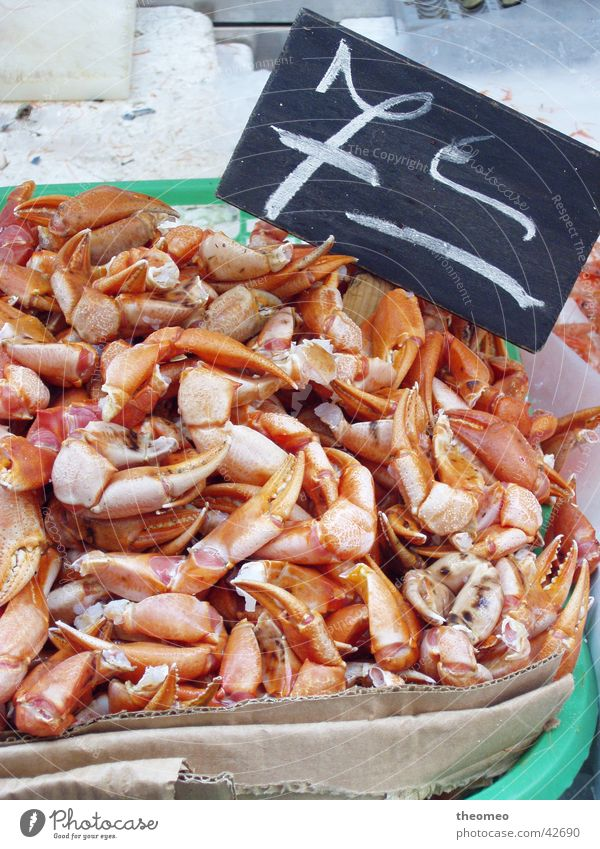 Nutrition Fresh Markets Shellfish Shrimp
