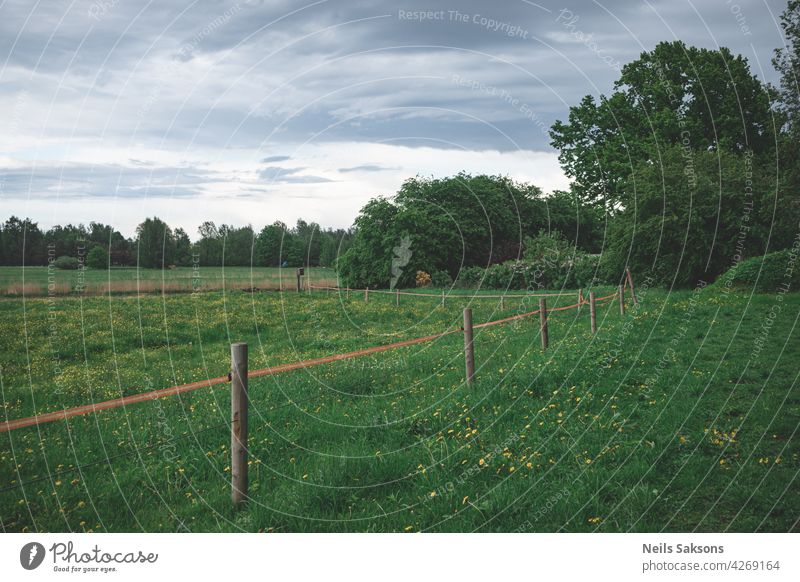electrical wire fence around a pasture landscape grass sky field nature farm green summer countryside meadow rural blue agriculture tree clouds wooden trees