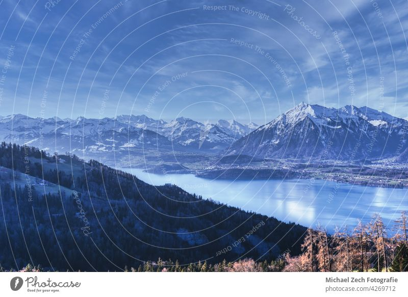 View over the lake of Thun to the mountain Niesen and the Swiss Alps landscape travel attraction interlaken nature vacation scenery tourism alps thun alpine
