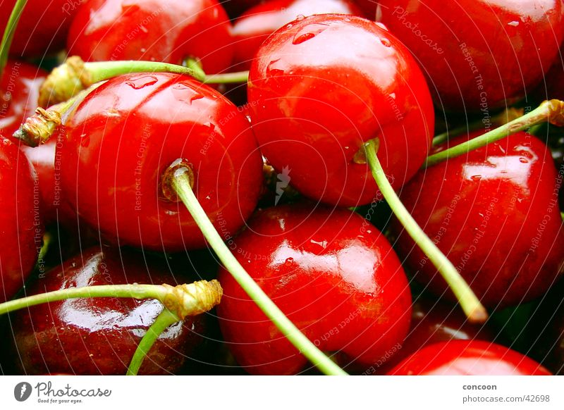 Summer Drops of water Wet Fresh Cherry Juicy