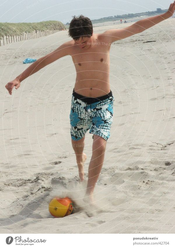 beatle Beach Action Playing Sports Soccer Ball Volleyball (sport) Sand Shot Feet