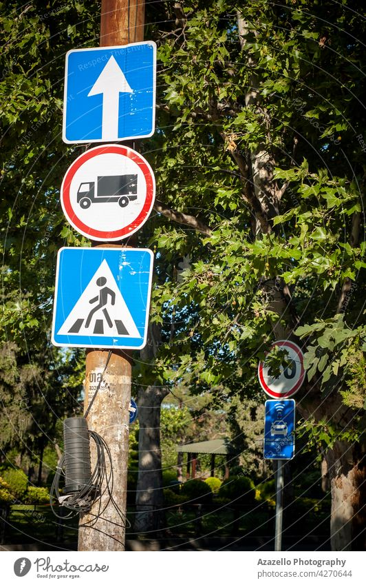 Three road signs among the trees under the bright morning sunlight. straight forward direction bus line stop zebra crossing pedestrian icon symbol travel nature