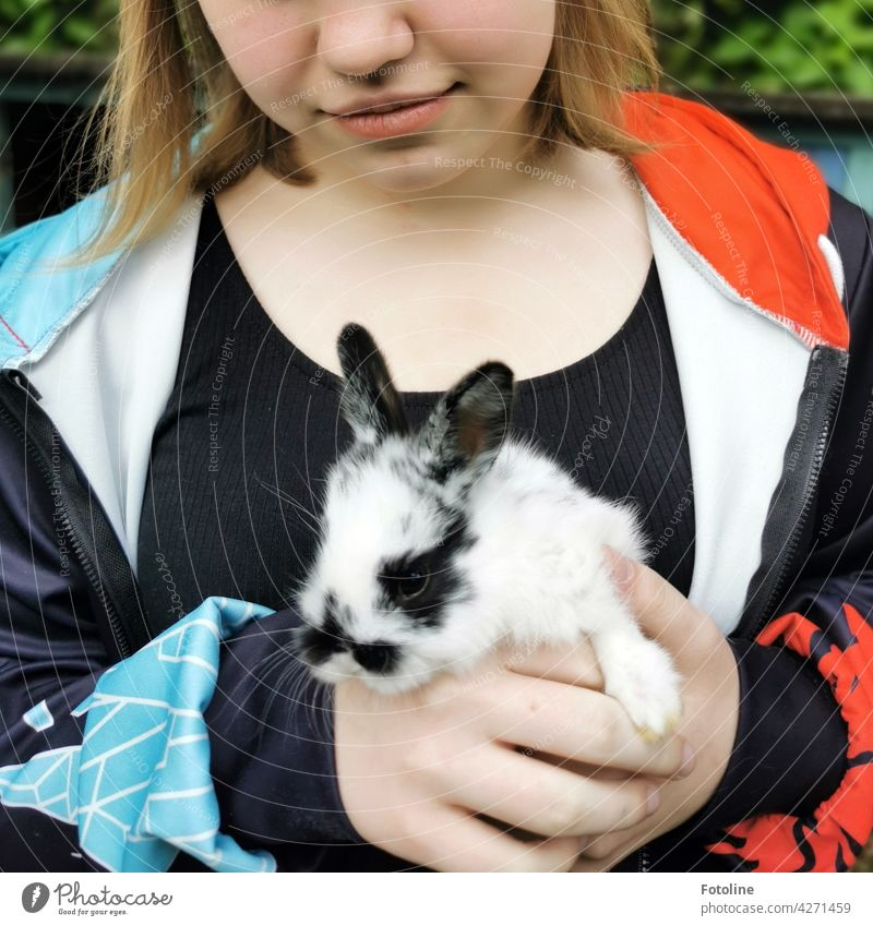 The girl is completely in love with this cute and curious little rabbit. Hare & Rabbit & Bunny Animal Ear Pelt Pet Cute Colour photo Animal portrait Day