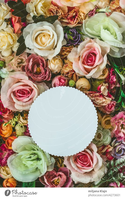 Beautiful colorful flowers wall background, with white circle greeting card with copy space; Spring, wedding, anniversary or florist greeting card advertising