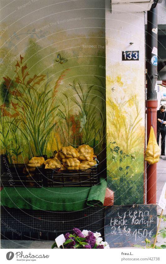 Flower Work and employment Vegetable Merchant Potatoes Mural painting Lilac Street vendor Gate entrance Courtyard entrance
