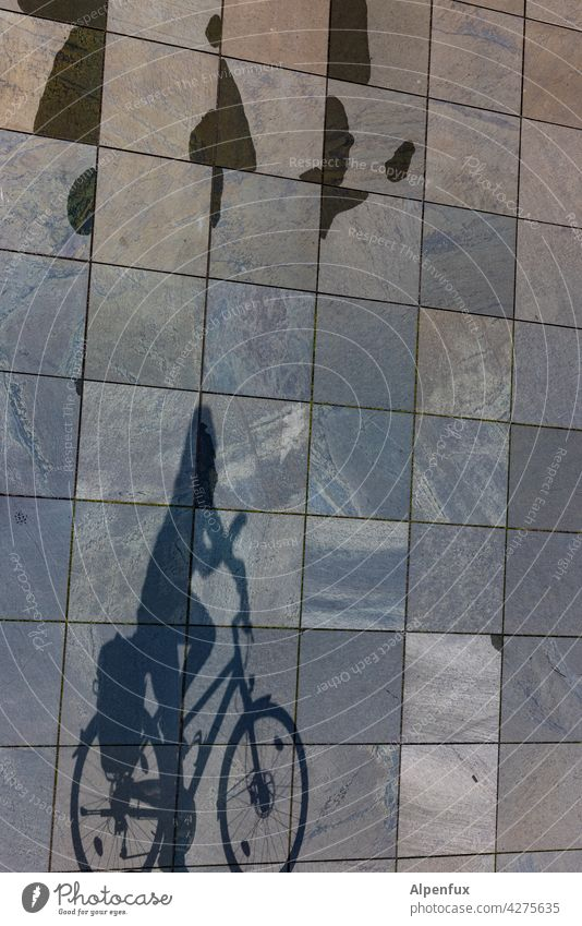 shady Cycling Bicycle Movement Cycling tour Wheel Means of transport Transport Eco-friendly Athletic Shadow cyclist Shadow play Light Leisure and hobbies
