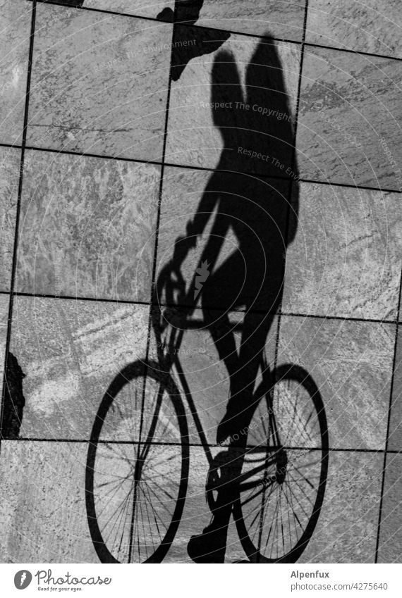 Upside Down | Radler cyclist Shadow Shadow play Light Cycling Bicycle Leisure and hobbies Exterior shot Movement Cycling tour Driving Lanes & trails Trip Wheel