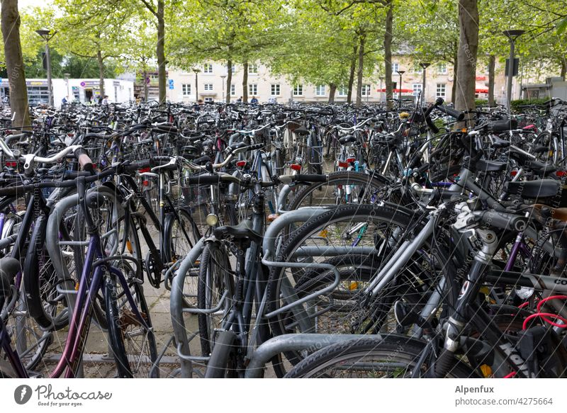 Residents' parking Bicycle Cycling Town Means of transport Transport Driving Exterior shot Parking lot Cycling tour Cycle path Search for a parking space