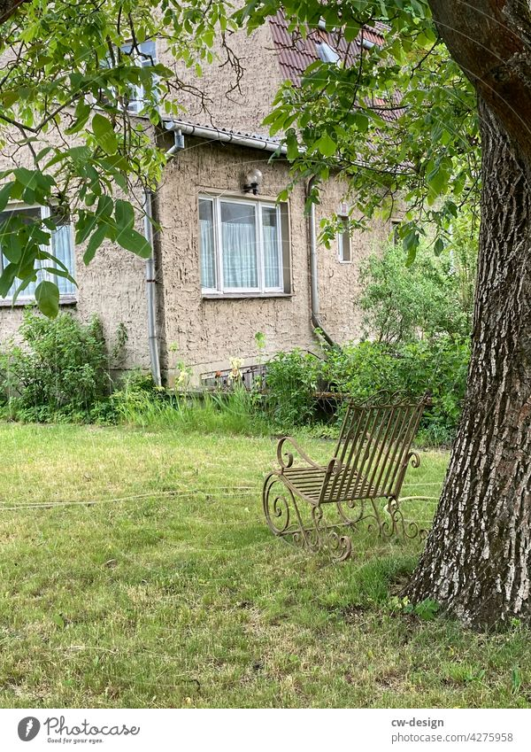 A cookie under a tree - a shady place Tree Oak tree Garden Rocking chair To swing Cozy idyllically Nature Colour photo Exterior shot Day Plant Deserted Green