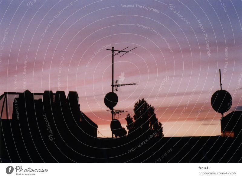 Sky Pink Roof Technology Dusk Chimney Bowl Electrical equipment Skylight Poplar