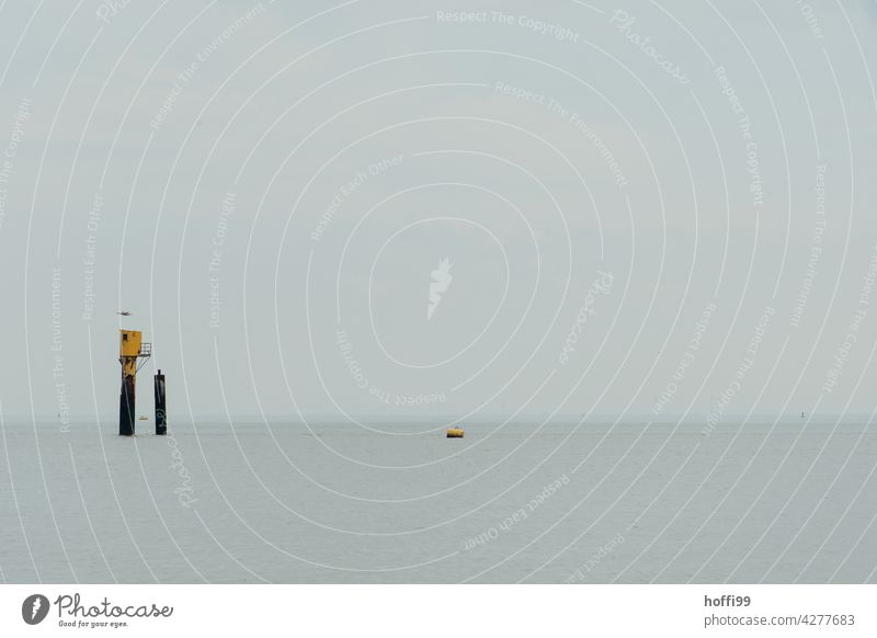 Rescue beacon with seagull and buoy in the Wadden Sea Loneliness calm water Rescue equipment Mud flats shallow water Buoy Minimalistic North Sea coast Beach