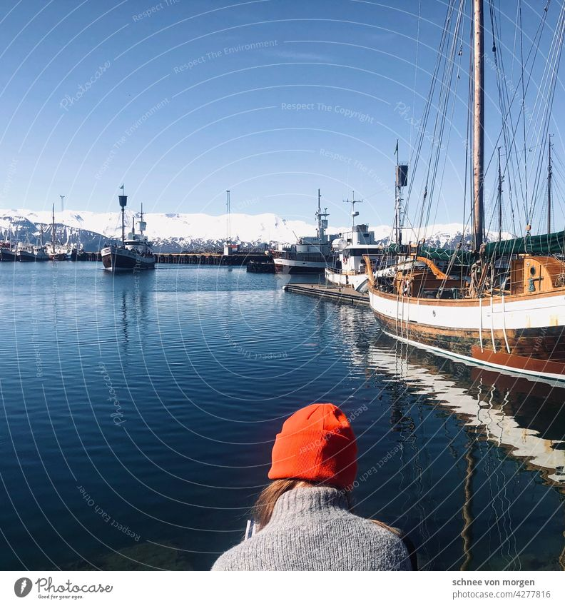 Orange cap at the harbour Ocean Cap Summer vacation Harbour ships boats Environment Water Sky Vacation & Travel coast Nature Blue Exterior shot Landscape Whales
