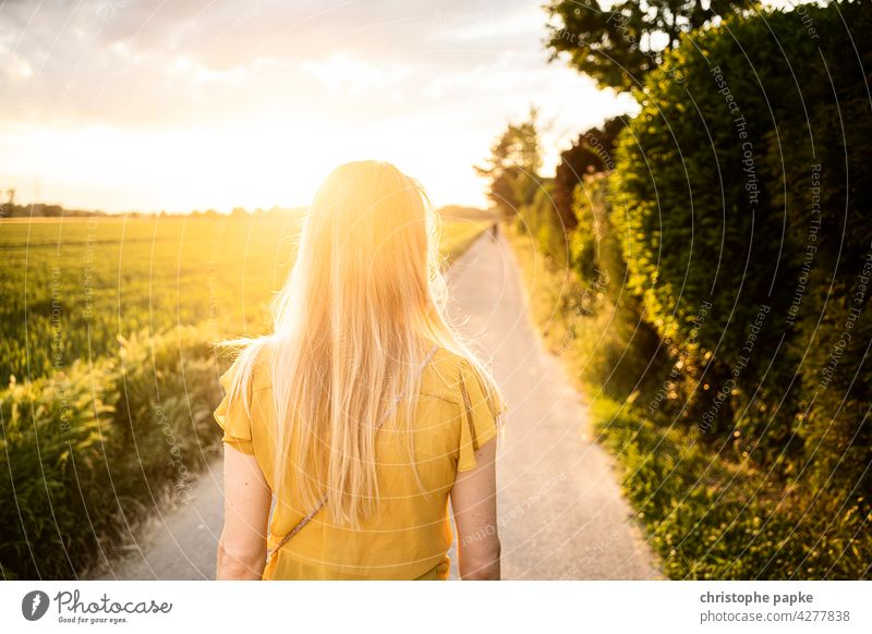 Rear view blonde woman walking in the evening on field, low sun Woman To go for a walk Field Evening Blonde Sun off the beaten track evening light Summer hair