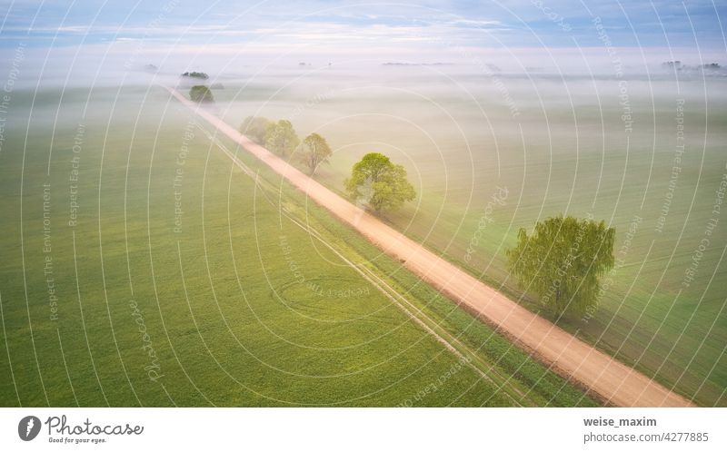 Aerial view of rural dirt road and trees covered by fog. Early misty morning. Spring summer fields. Rainy overcast moody weather cloud rain agriculture panorama