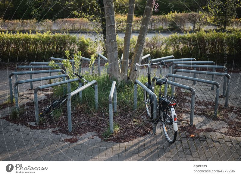 Bicycle parking space arranged in a circle in the evening sun Parking space Bicycle rack turnaround Shadow Light Evening Sun Sunlight Evening sun Parking lot