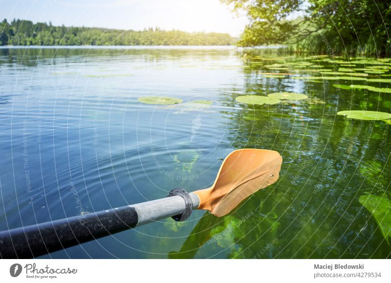 Kayak paddle in the water, selective focus. kayak sport nature canoe adventure lake river activity summer vacation oar equipment leisure journey recreation