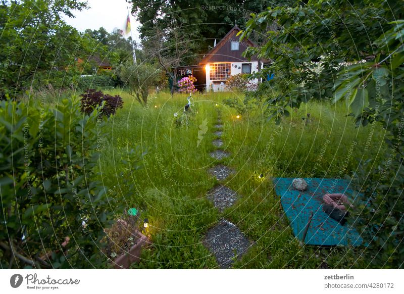 Garden in the evening Evening Branch Tree Dark Twilight Relaxation holidays Sky allotment Garden allotments bud Deserted Night Nature Plant tranquillity