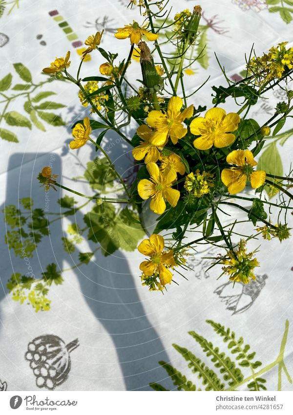 Photographing yellow flowers in the sunshine. Smartphone and hand shadow little flowers Bouquet Take a photo smartphone smartphone photography Light and shadow
