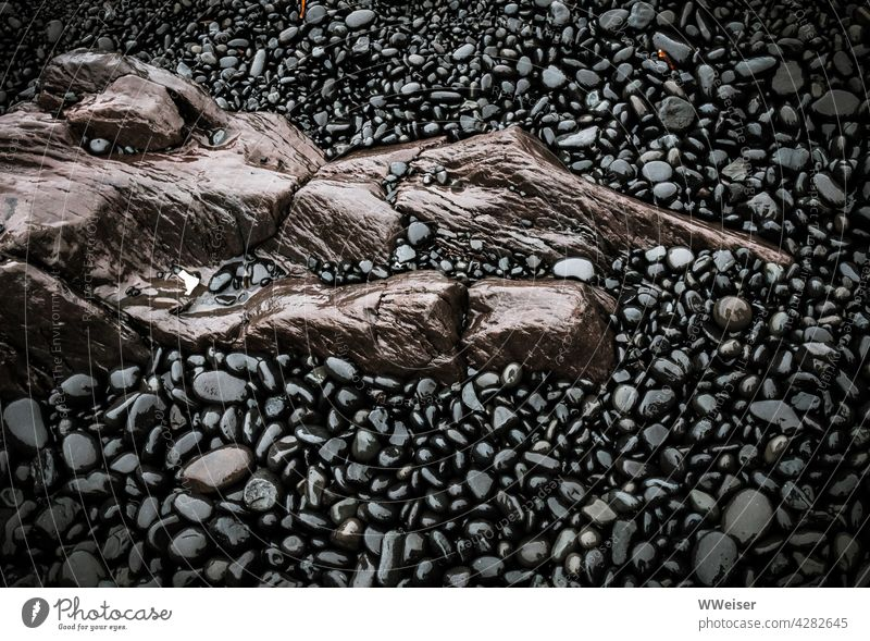 A large interestingly shaped brown stone shines wet amidst black pebbles Stone Wet Damp Earnest Rain White crest Beach coast Brown Black Abstract eccentric