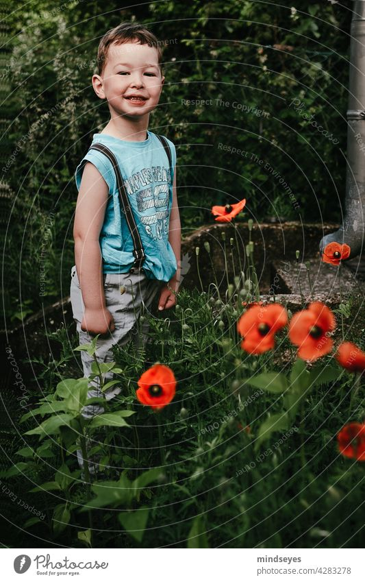 Boy with braces stands in poppies flowers Boy (child) Infancy Nature Garden Summer Blossom Poppy poppy flower Exterior shot Poppy blossom boys Brash rascals out