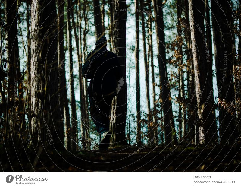 Walking between tree + bark Tree trunk Forest Nature Structures and shapes Silhouette Shadow Light (Natural Phenomenon) Back-light Contrast To go for a walk