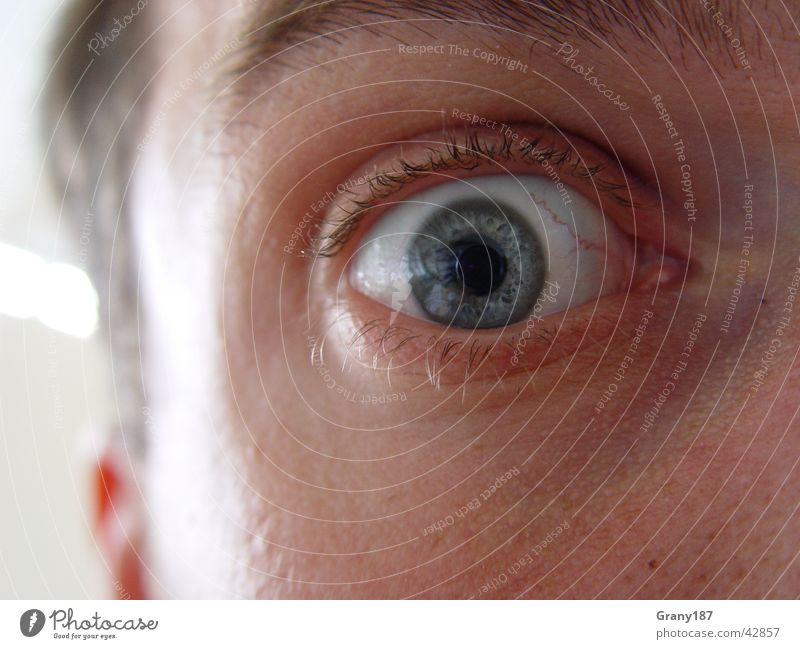 Human being Man Blue Face Eyes Life Cold Lake Fear Perspective Cool (slang) Ear Near Anger Panic Eyelash