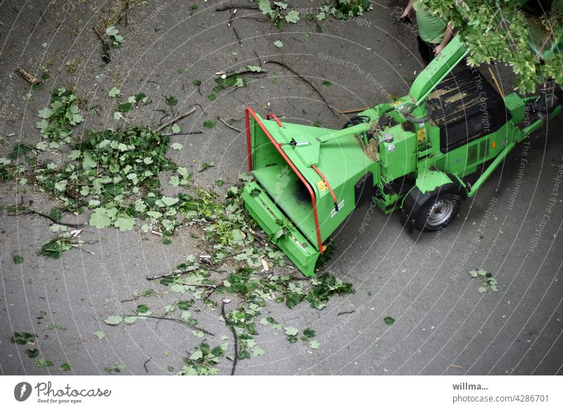 the AST swallower and leaf shredder Tree chipper Wood chipper Tree Shredder Wood Shredder Branch shredder Hacker Forestry Gardening and landscaping forestry