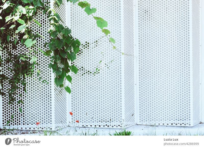 Parking garage wall made of white perforated sheeting, summery decorated in green and red Wall (building) Plate with holes White Bright Summery Building foliage