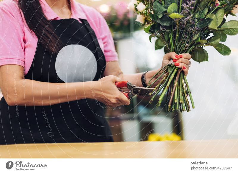 A professional female florist in an apron cuts the stem of flowers with scissors at the table. The concept of working with flowers, flower business. pruning