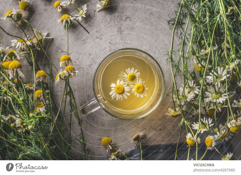 Close up of herbal chamomile tea in glass cup with fresh flowers. Top view close up bundle herbs autumn theme dark concrete background top view warming seasonal