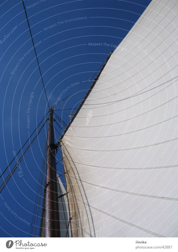sailing dream Sailing Summer Vacation & Travel Watercraft In transit Ocean Navigation Blue sky Wind Electricity pylon