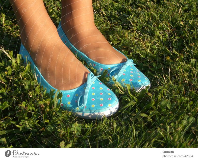 blue shoes Woman Summer shoe Blue grass
