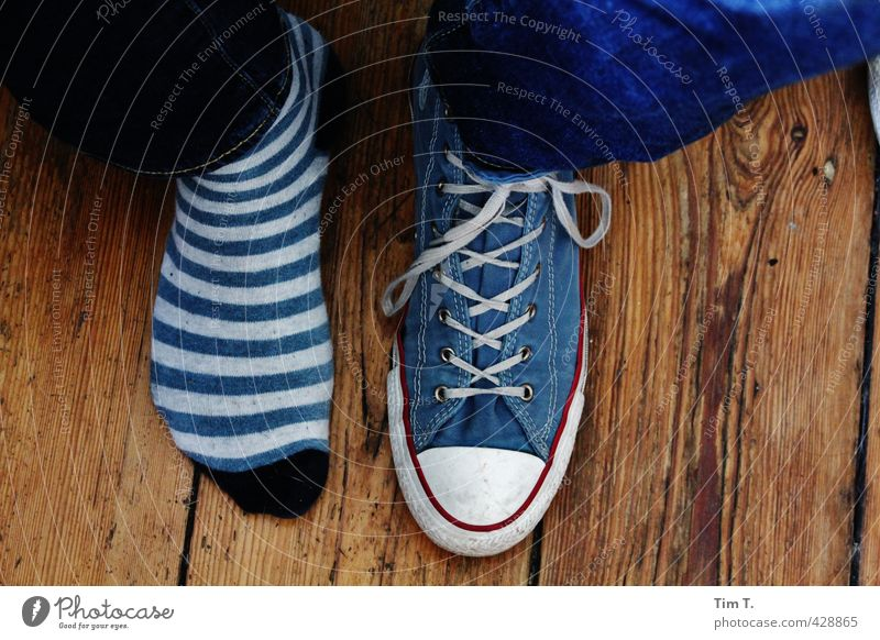 forgotten Lifestyle Fashion Stockings Footwear Sneakers Contentment Chucks Colour photo Interior shot Day Downward